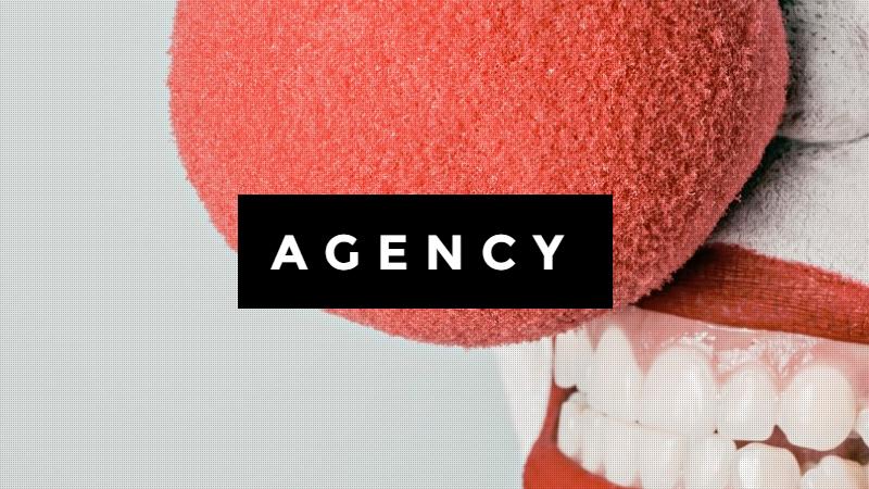 Agency Vivid / Portfolio