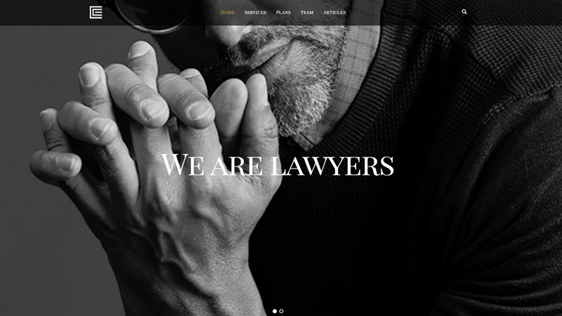 Law Firm / Lawyer